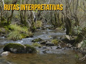 ca_rutas_interpretativas1.jpg