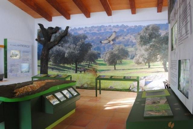 phoca_thumb_l_instalaciones03.jpg
