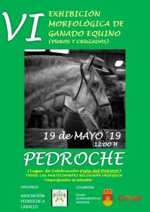 VI Exhibición Morfológica de Ganado Equino. Pedroche